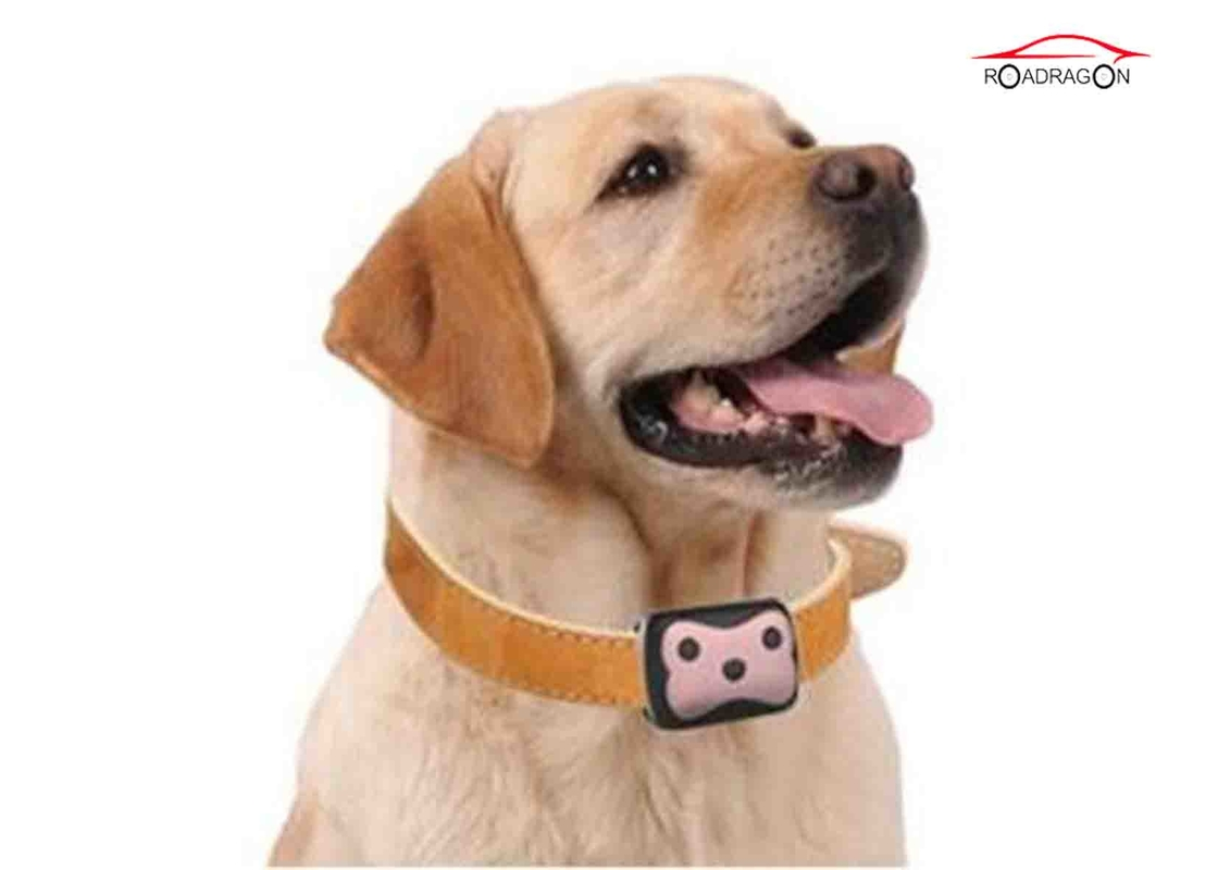 Smart Wifi Pet GPS Tracker , Anti - Lost GPS Dog Tracking Collar Led Singal Light